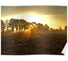 Rays of light in the morning Poster