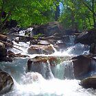 Bubbs Creek by Talo Pinto