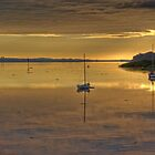 Sunrise on the River Tay by Panalot