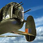 Tail End Charlie - Lancaster - R.A.F. Museum - Hendon by Colin J Williams Photography