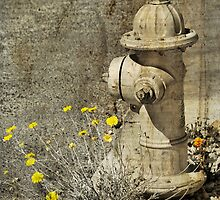 The Old Fire Hydrant by Barbara Manis