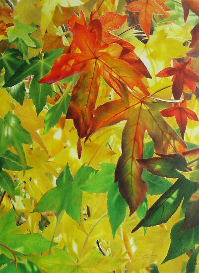 Autumn Light and Colour  by Heidi Schwandt Garner