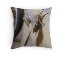 Poplar Hawk-moth (Laothoe populi) Throw Pillow
