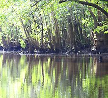 River  by topgund
