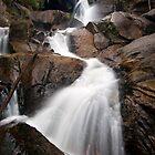 Upper Toorongo Falls by Travis Easton