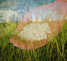 A few grains of life by Nathalie Chaput