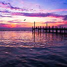 Dockside Sunset by Janet Fikar