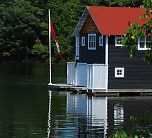 Muskoka boathouse. by John Beamish
