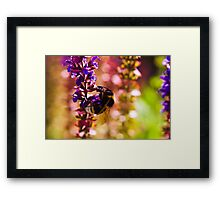 Just Another Day at the Office Framed Print