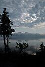Blue Series - Kluane Lake 1 by Barbara Burkhardt