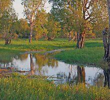 Yellow Waters, Cooinda, Kakadu National Park, Northern Territory, Australia by Adrian Paul