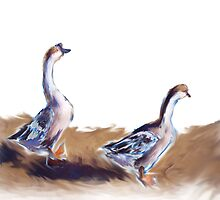 Geese Walking By by Stephanie A Marks