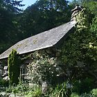 Cottages of England and Wales by Allen Lucas