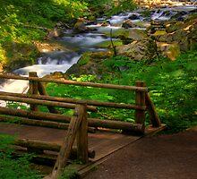 Bridging Sol Duc - Columbia River Gorge, Oregon by John Absher
