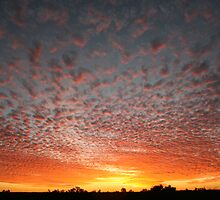 Simpson Desert Sunset by A1000WORDS