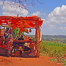 Roadside Stall, Tanzania, Africa by Adrian Paul