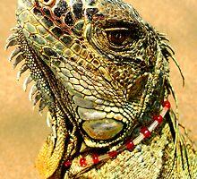 Fancy Iguana by MaluC