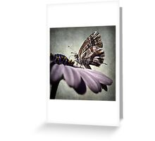 The little butterfly Greeting Card