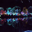 Columbus Zoo - The Lights by ReadingBeauty
