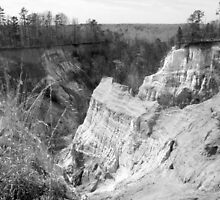 Canyon in Graytones by Bob Hardy