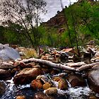 Desert creek by Aaron  Cromer
