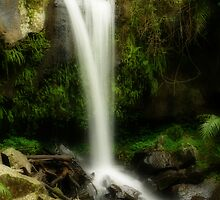 Curtis Falls, Queensland by Keith G. Hawley