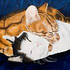 Peaceful sleep?-Jake and Jonah-Pet portrait by Pauline Sharp