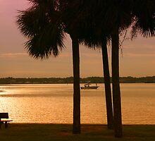 Tropical Sunsrise by kinz4photo