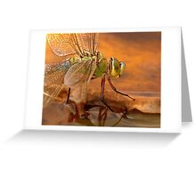 Emperor Dragonfly Greeting Card