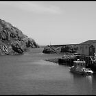 Quidi Vidi Harbour by cateye30