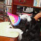 Where's the Cake Mom ????? by AnnDixon