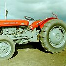 Massey Ferguson 35 Tractor by Edward Denyer