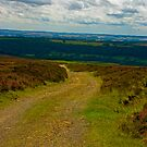 Moorland Track by Trevor Kersley