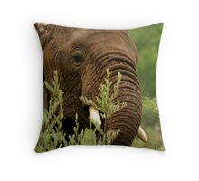 Elephant in the rain Throw Pillow