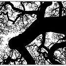 diptych fractal one by dennis william gaylor