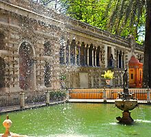 SEVILLA -The ALCAZAR - Main fountain and pool by Daniela Cifarelli