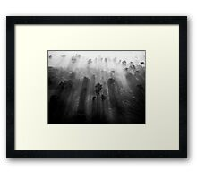 Through The Trees Comes The... (B/W) Framed Print