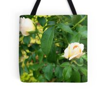 A Rose is a Rose 9 Tote Bag