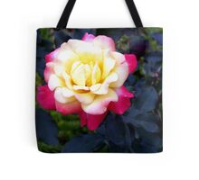 A Rose is a Rose 10 Tote Bag