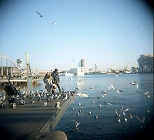 Family Pigeons by Melissa Ramirez