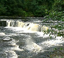 Aysgarth Falls - North Yorkshire by Trevor Kersley