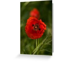 Stage light Greeting Card