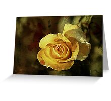 Rust 'n Roses #2 Greeting Card