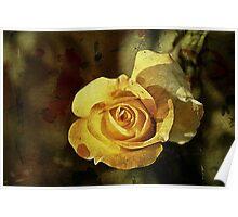 Rust 'n Roses #2 Poster