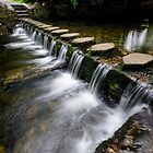 Stepping Stones by Mark  Allen