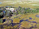 Island in the Okavango by Graeme  Hyde