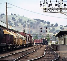Wodonga RS 198103000040 by Fred Mitchell
