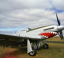 Flying Shark - P.51D Mustang - Downunder Airshow,  Victoria by Bev Pascoe