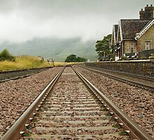 Ribblehead station by Steve  Liptrot