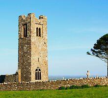 Ruins of Slane Abbey by Martina Fagan
